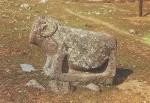 qoc-heykel-300x200