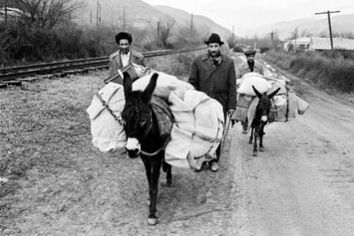 Ermənistandan köçkün düşənlər, Zəngilan. 1989-cu il. 3