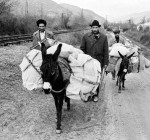 Ermənistandan köçkün düşənlər, Zəngilan. 1989-cu il. 3 kicik