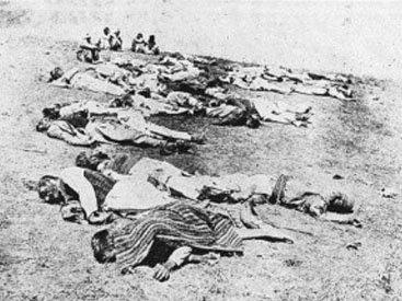 Борьба за Закавказье. Армяне