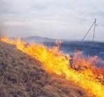 Армяне устроили пожар kicik