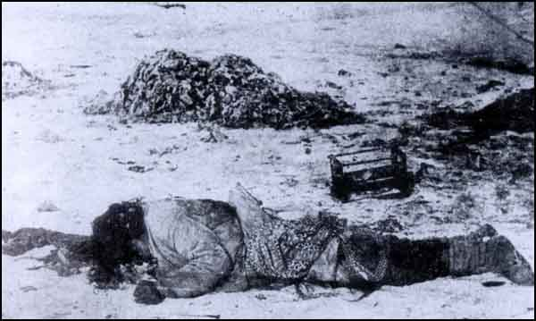 A Turkish women named Pakize who was raped and then killed by the Armenians in Erzincan.