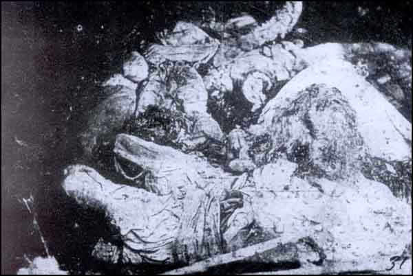 Armenian atrocity against women and children. Those corpses were found in Mamahatun (Tercan).