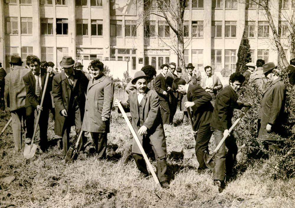 Ümumittifaq iməcliyi günündə Azərbaycan E.A şəhərciyində. 19 aprel 1974-cü il